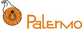 Fipav Palermo